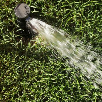 Irrigation Repair & Maintenance